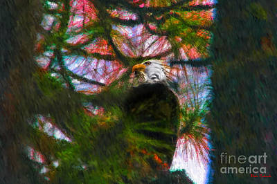 Photograph - Yosemite Bald Eagle by Blake Richards