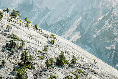 Photograph - Yosemite - Basket Dome Slope by Alexander Kunz