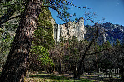 Photograph - Yosemite Bridalveil Fall by Terry Garvin