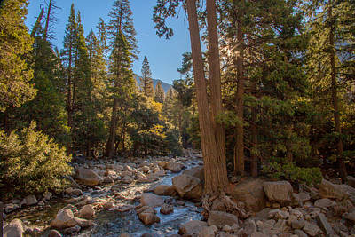 Half Dome Photograph - Yosemite Creek by J Allen