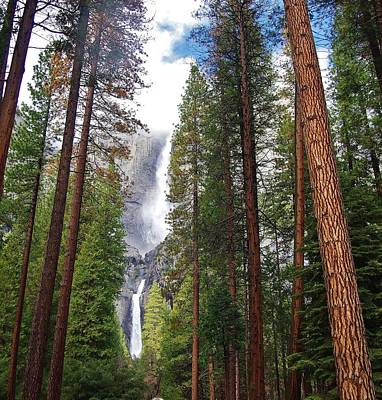 Photograph - Yosemite Falls A by Phyllis Spoor