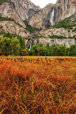 Photograph - Yosemite Falls Autumn Colors by Jay Moore