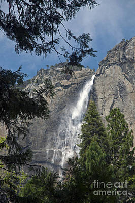 Photograph - Yosemite Falls by Cindy Murphy - NightVisions