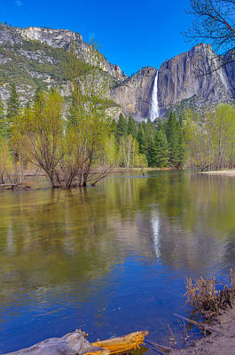 Art Print featuring the photograph Yosemite Falls Cook's Meadow by Scott McGuire