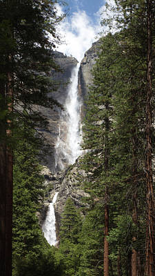Photograph - Yosemite Falls by Harold Rau