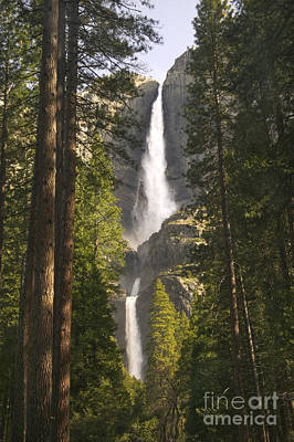 Photograph - Yosemite Falls by Inga Spence