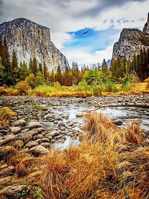 Photograph - Yosemite Flight by LeeAnn McLaneGoetz McLaneGoetzStudioLLCcom