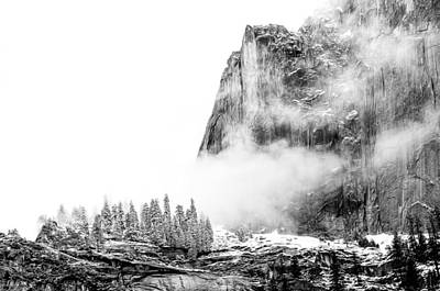 Photograph - Yosemite Fog by Maria Coulson
