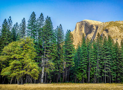 Photograph - Yosemite From Below by Rikk Flohr