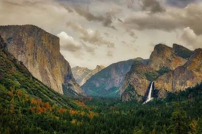 Photograph - Yosemite by Jerry Golab
