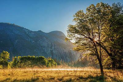 Photograph - Yosemite Meadow by Andrew Soundarajan