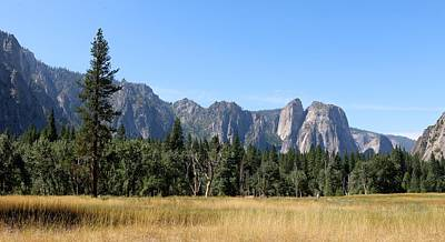 Photograph - Yosemite National Park - 4 by Christy Pooschke