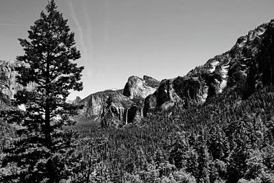 Photograph - Yosemite National Park Black And White by Judy Vincent