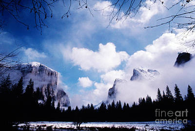 Photograph - Yosemite National Park by Marion Patterson