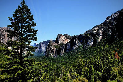 Photograph - Yosemite National Park Painted by Judy Vincent