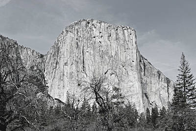 Usa Photograph - Yosemite No. 5-2 by Sandy Taylor