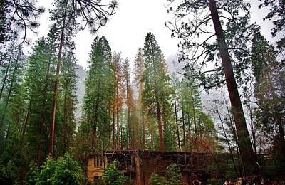 Photograph - Yosemite Park Rainy Day B by Phyllis Spoor