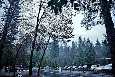 Photograph - Yosemite Park Rainy Day C by Phyllis Spoor