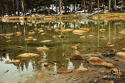 Photograph - Yosemite Pond by Ben Graham