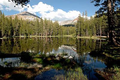 Branches Photograph - Yosemite Reflections C by LeeAnn McLaneGoetz McLaneGoetzStudioLLCcom