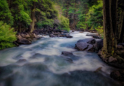 Photograph - Yosemite River by Jerry Golab