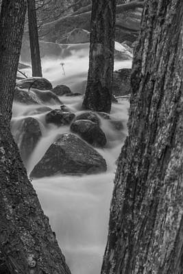 Photograph - Yosemite Stream And Trees Black And White by John McGraw