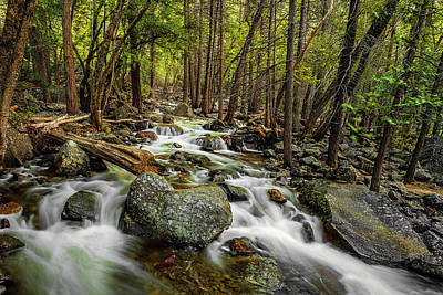 Photograph - Yosemite Stream by Andrew Soundarajan