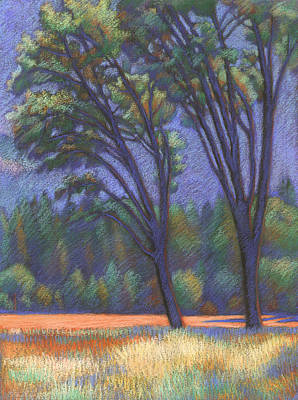 Drawing - Yosemite Trees by Linda Ruiz-Lozito