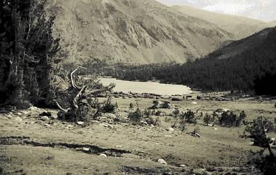 Photograph - Yosemite Tuolumne by John Schneider