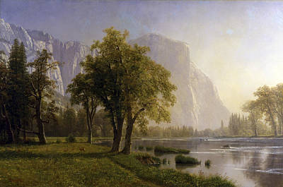 El Capitan Painting - Yosemite Valley by MotionAge Designs