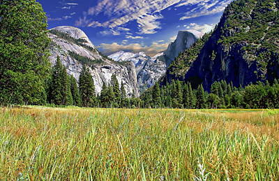 Photograph - Yosemite Valley by Anthony Dezenzio