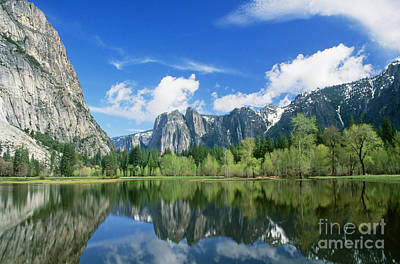 Photograph - Yosemite Valley by Brenda Tharp