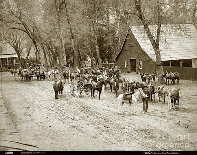 Photograph - Yosemite Valley, California Circa 1885 by California Views Mr Pat Hathaway Archives