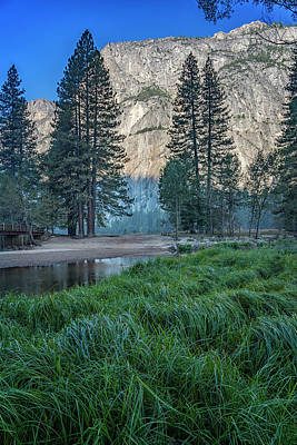Photograph - Yosemite Valley Grasses 7r2_dsc2420_10082017-hdr by Greg Kluempers