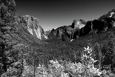 Photograph - Yosemite Valley View by Christiane Schulze Art And Photography