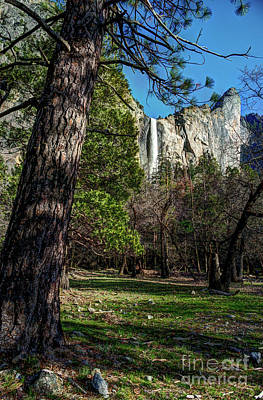 Photograph - Yosemite Valley View Of Bridalveil Fall by Terry Garvin