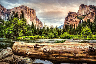 Photograph - Yosemite View by Maria Coulson