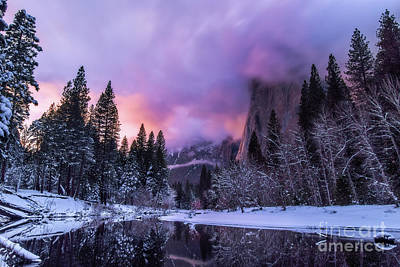 Photograph - Yosemite Winter by Vincent Bonafede