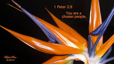 Photograph - You Are A Chosen People. 1 Peter 2-9 by Michele Penn