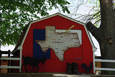 Photograph - You Are In Texas by Robyn Stacey