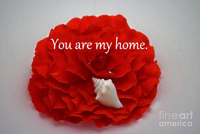 Photograph - You Are My Home by Patti Whitten