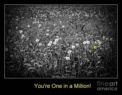 Photograph - You Are One In A Million by Deb Badt-Covell