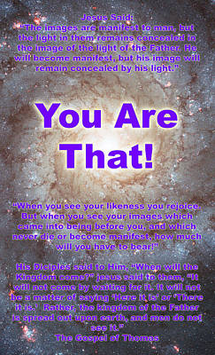 You Are That Art Print by Stephen Carver