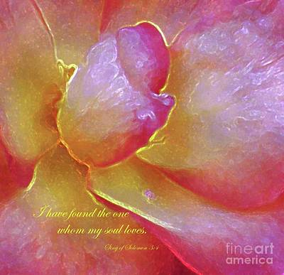 Photograph - I Have Found The One by Hazel Holland