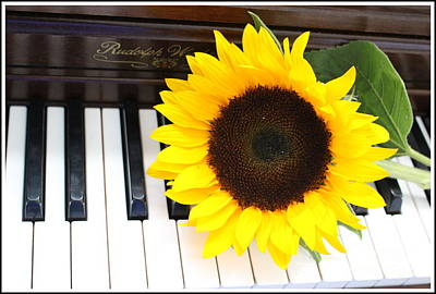Piano Photograph - You Are The Sunshine Of My Life - A Love Song by Dora Sofia Caputo Photographic Art and Design