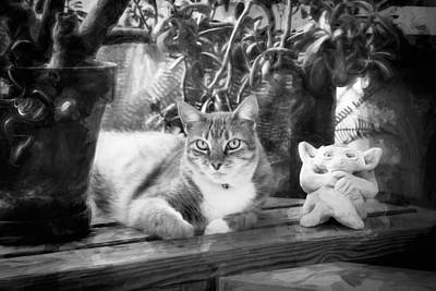 You Both Lookin At Me Ginger Cat Bw Art Print by Rich Franco
