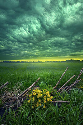 Photograph - You Can Dance In The Storm by Phil Koch