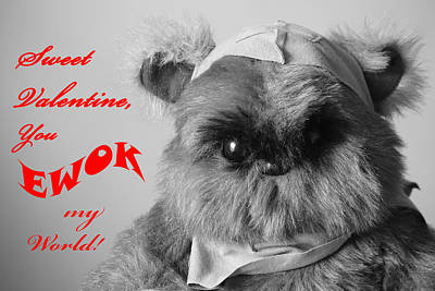 Ewok Photograph - You Ewok My World Valentine by Southern Tradition