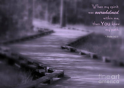 You Knew My Path Art Print by Debra Straub
