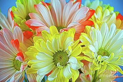 Photograph - You Make Me Happy 12218-2 by Ray Shrewsberry